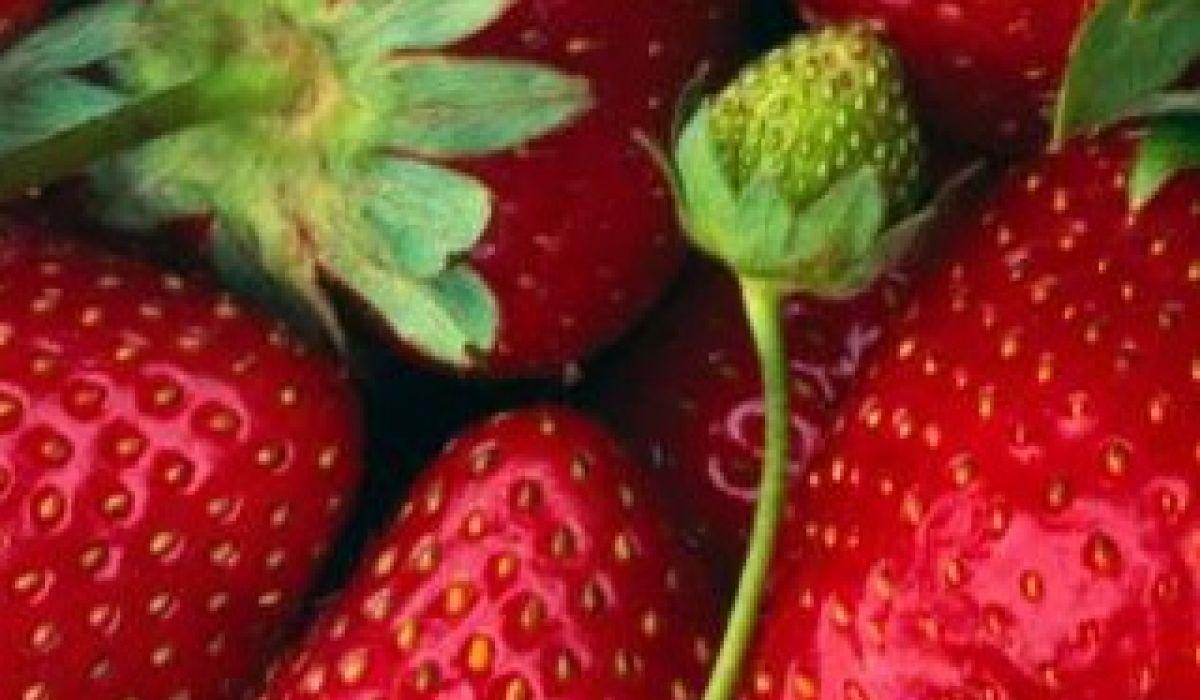 Fresas, ideales en primavera y verano